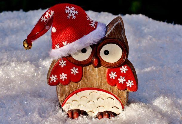 hiboo vous souhaite un joyeux Noël !